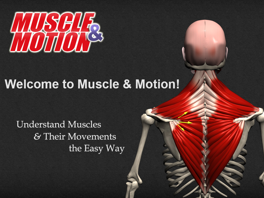 Homepage | Muscle&Motion - Strength Training Anatomy, Muscular ...