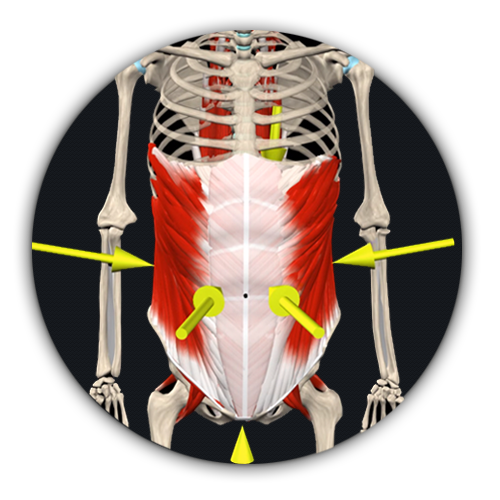 Abdominal Bracing | What Strength Trainers Need For a Better Workout